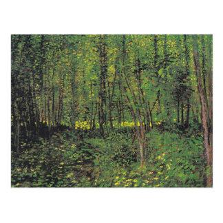 Árboles y maleza de Van Gogh Postal