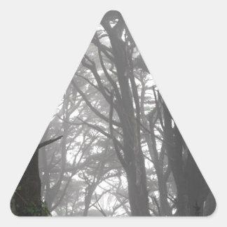 Árboles y niebla del Mt Davidson Pegatina Triangular