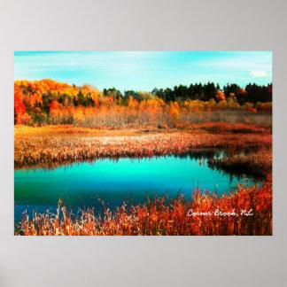 Árboles y región pantanosa Terranova Canadá del ot Póster