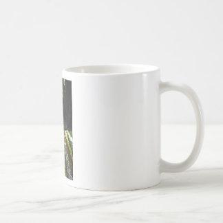 Árboles y tronco de la secoya tazas de café
