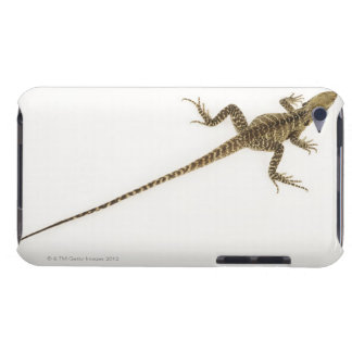 Arboreal agamid species native to Eastern Case-Mate iPod Touch Case