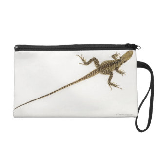 Arboreal agamid species native to Eastern Wristlet Purse