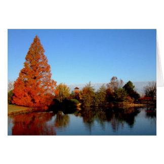 Arboreto de $cox tarjeta