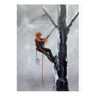 Arborist Long Haul Stihl .Husqvarna Postcard