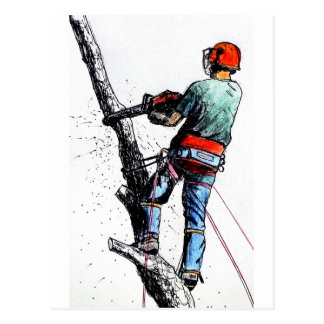 Arborist Tree Surgeon Stihl Postcard
