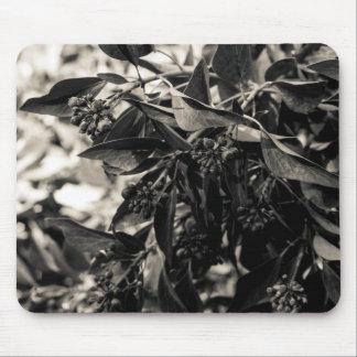 Arbusto blanco y negro Mousepad