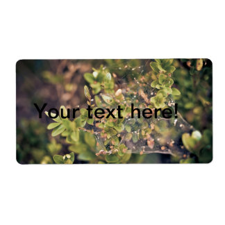 Arbusto de la hiedra etiquetas de envío