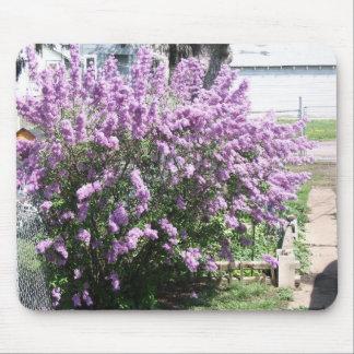 arbusto de lila mousepad