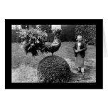 Arbusto del gallo en el chalet Trianon 1925 Felicitación