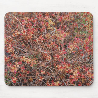 Arbusto Mousepad - 2 del arbolado