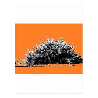 Arbusto salvaje del desierto con el naranja tarjetas postales