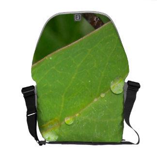 Arbustos en gotas de lluvia bolsas de mensajería