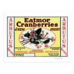 Arbutus Eatmor Cranberries Brand Postcard
