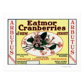 Arbutus Eatmor Cranberries Brand Postcards