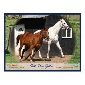 Arc Bars Miss and Bel's Starlet Postcard