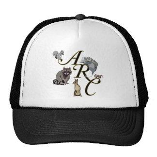ARC Baseball Hats
