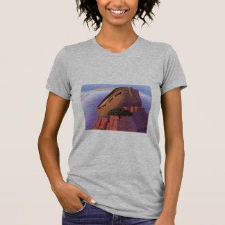 Arca de Noahs Camisetas
