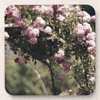 Arcada romántica de los rosas posavaso