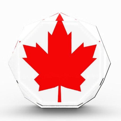Arce canadiense