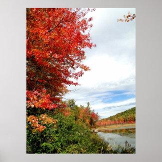 Arce de Nueva Inglaterra en poster de la foto de
