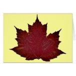 Arce del otoño - rojo felicitación