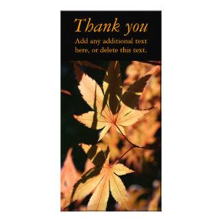 Arce japonés (1) - gracias - colores del otoño tarjeta fotográfica