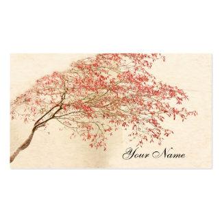 Arce japonés tarjetas de visita