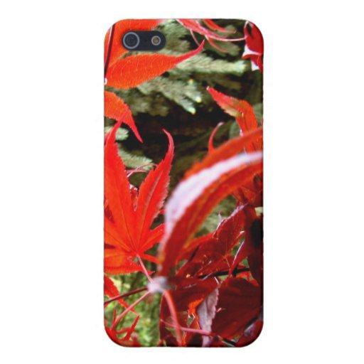 Arce rojo iPhone 5 carcasa
