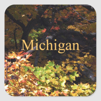 Arces del otoño de Michigan Calcomanías Cuadradass