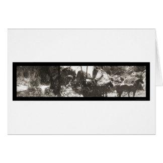 Arch Rock Yosemite Photo 1908 Card