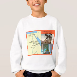 Archaeological sites in the Nile valley. Sweatshirt