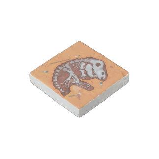 Archaeology Dinosaur Bones Dig Stone Magnet
