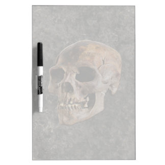 Archaeology II - Skull on Stone-effect Background Dry Erase Board
