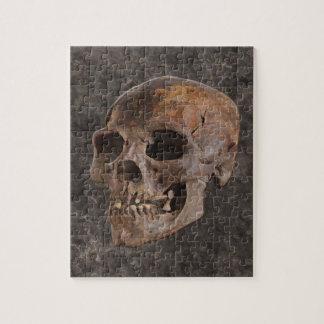 Archaeology II - Skull on Stone-effect Background Jigsaw Puzzle