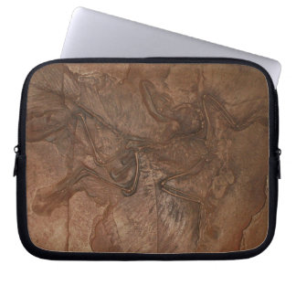 Archaeopteryx fossil - Laptop sleeve