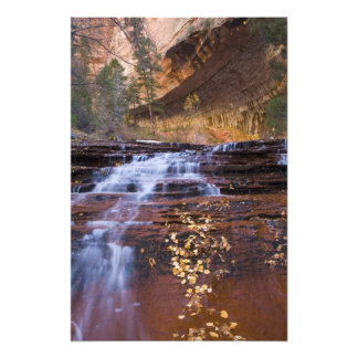 Archangel cascades in the Left Fork of the Photo Print