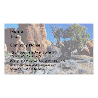 Arches Arches National Park Double-Sided Standard Business Cards (Pack Of 100)