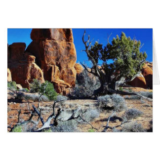 Arches Arches National Park Greeting Card