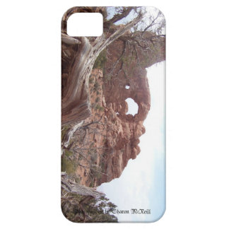 Arches iPhone 5 case