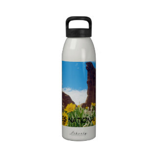 Arches National Park - Mules Ears Reusable Water Bottles