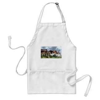 Arches National Park South window from the Back Adult Apron