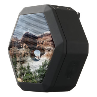 Arches National Park South window from the Back Black Bluetooth Speaker