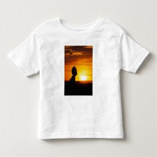Arches National Park, UT Balance Rock at Toddler T-shirt