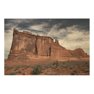 Arches National Park Wood Wall Art