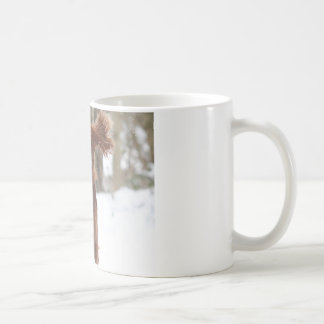 Archie II Coffee Mug