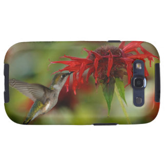 Archilochus Rubí-Throated Colubris del colibrí Samsung Galaxy S3 Funda