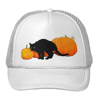 Arching Black Cat and Pumpkins Hats