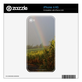 Arching Rainbow iPhone 4 Decals