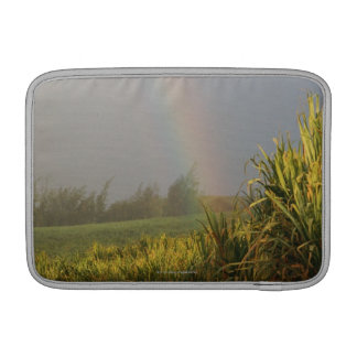Arching Rainbow MacBook Air Sleeve