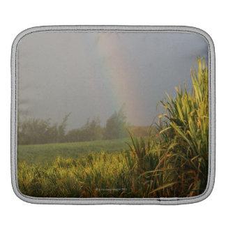 Arching Rainbow Sleeve For iPads